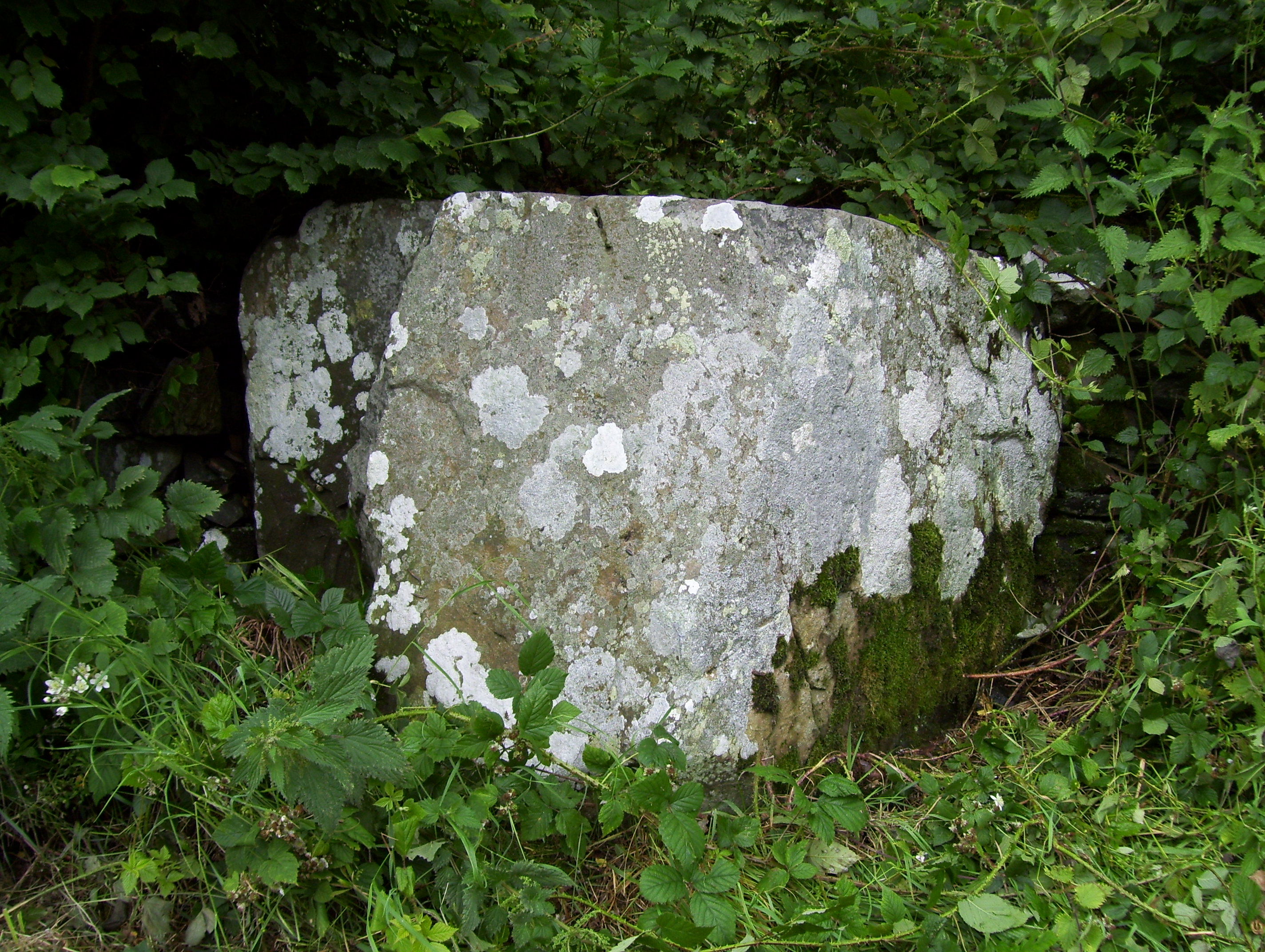 The Alter Stone